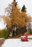 Rode adirondackstoelen tussen seizoenen in Canada royalty-vrije stock afbeeldingen