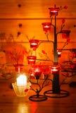 Rode amaryllis Stock Fotografie
