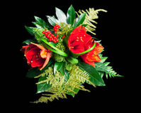 Rode amaryllis Royalty-vrije Stock Afbeelding
