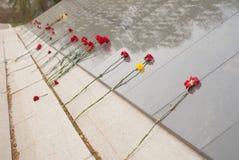 Rode anjers op de herdenkings gevallen helden tijdens de tweede wereldoorlog, stock fotografie