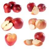 Rode appel, Stock Afbeelding