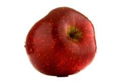 Rode appel. Royalty-vrije Stock Afbeeldingen