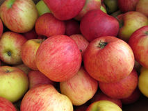 Rode appel bij de markt Stock Foto's