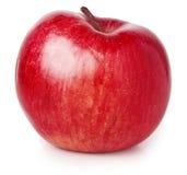 Rode appel die op wit wordt geïsoleerdd Stock Fotografie