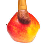 Rode appel en borstel Stock Fotografie