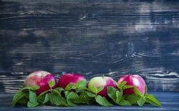 Rode appel en munt op donkere achtergrond stock afbeelding