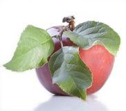 Rode appel met blad Royalty-vrije Stock Afbeelding