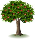 Rode appel op appelboom royalty-vrije illustratie
