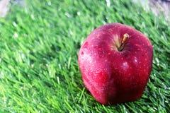 Rode appel op groen gras Stock Fotografie
