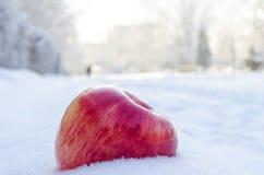 Rode appel op wit en luchtsneeuw Stock Afbeeldingen