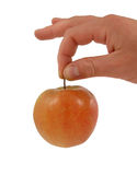 Rode appel ter beschikking Stock Fotografie