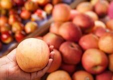 Rode appel in vrouwenhanden Stock Fotografie