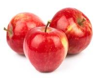 Rode appelen Stock Foto's