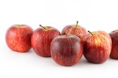 Rode appelen Royalty-vrije Stock Fotografie