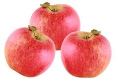 Rode appelen die op wit worden geïsoleerde Stock Afbeelding