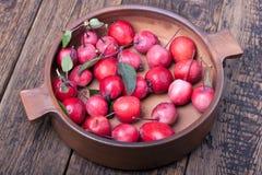Rode appelen in een ceramische pot stock fotografie