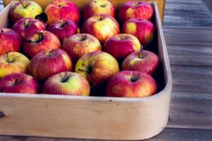 Rode Appelen in een Doos Stock Afbeeldingen