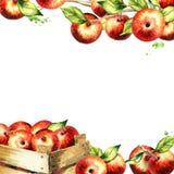 Rode appelen en bladeren vierkante achtergrond Waterverfmalplaatje Stock Foto's