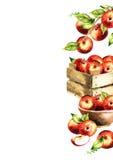 Rode appelen en groene bladerenachtergrond Waterverf te Stock Fotografie