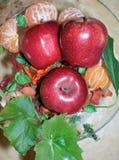 Rode appelen en mandarijnen in vaas Stock Afbeeldingen