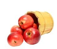 Rode appelen in houten emmer Stock Afbeelding