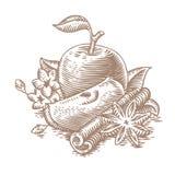 Rode appelen met kaneel en steranijsplant Stock Foto's