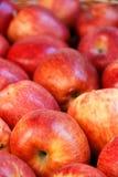 Rode appelen op een landbouwersmarkt Stock Foto's