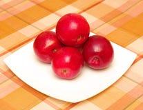 Rode appelen op plaat Royalty-vrije Stock Foto