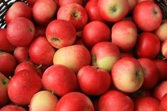 Rode appelen voor verkoop Stock Foto