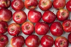 Rode appelenachtergrond Stock Foto