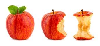 Rode appelrij Stock Foto's