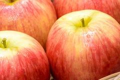 Rode appelvruchten Stock Foto