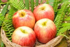 Rode appelvruchten Stock Foto's