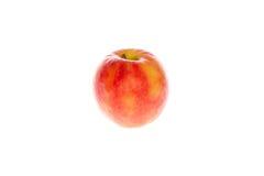 Rode appelvruchten met besnoeiing en groene bladeren Stock Afbeelding