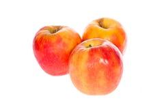 Rode appelvruchten met besnoeiing en groene bladeren Royalty-vrije Stock Foto's