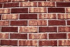 Rode Bakstenen muur Royalty-vrije Stock Afbeeldingen
