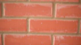 Rode bakstenen muur en camerabeweging stock videobeelden