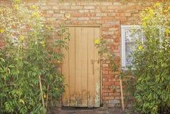 Rode bakstenen muur en houten deur royalty-vrije stock afbeelding