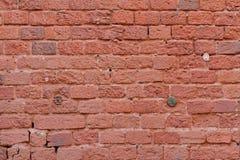 Rode bakstenen muur met houten oude pennen stock afbeelding