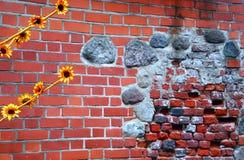 Rode bakstenen muurtextuur Stock Foto's