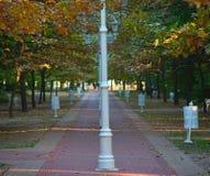 Rode bakstenenweg met rij van lantaarns in midden stock foto