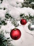 Rode bal op de Kerstboom royalty-vrije stock fotografie