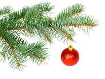 Rode bal op de Kerstboom Royalty-vrije Stock Afbeeldingen