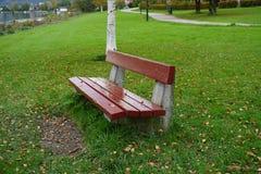 Rode bank in het park Stock Afbeeldingen