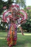 Rode Batik Royalty-vrije Stock Foto's