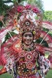 Rode Batik Royalty-vrije Stock Afbeeldingen