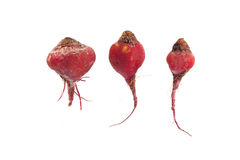 3 rode beeds Stock Foto