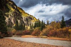 Rode Bergkreek - Colorado in de Herfst Royalty-vrije Stock Afbeeldingen