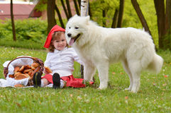 Rode berijdende kap en een wolf stock foto