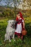 Rode Berijdende Kap en Wolf Royalty-vrije Stock Afbeeldingen